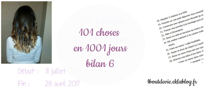 101 choses en 1001 jours bilan 6